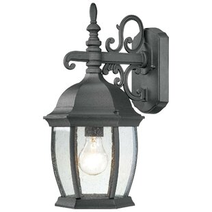Brew 1-Light Outdoor Wall Lantern