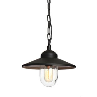 Whately 1 Light Outdoor Pendant Image