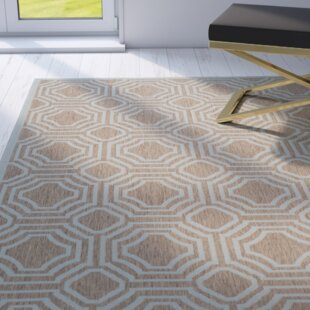 Olsene Brown/Aqua Indoor/Outdoor Area Rug