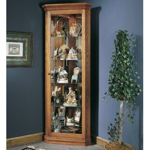 Best Buy North Palisade Lighted Corner Curio Cabinet By Loon Peak
