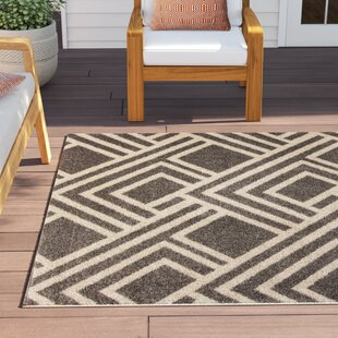 Andres Gray Indoor/Outdoor Area Rug