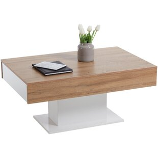 Aalia Coffee Table With Storage By 17 Stories