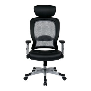 Best Reviews Pascarella Mesh Task Chair by Symple Stuff Reviews (2019) & Buyer's Guide