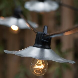 15-Light Globe String Lights By Wintergreen Lighting Outdoor Lighting