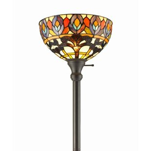 Best Choices Peacock 72 Torchiere Floor Lamp By Amora Lighting