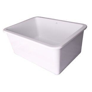 Review Pierina 30 x 19 Drop-In Kitchen Sink by Barclay