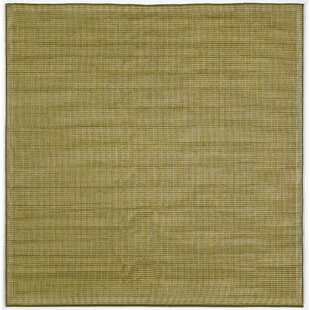 Cecile Green/Ivory Texture Indoor/Outdoor Area Rug