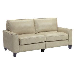 Buy luxury Serta® RTA Astoria 78 Sofa by Serta at Home Reviews (2019) & Buyer's Guide