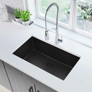 Black kitchen sinks youll love wayfair save to idea board workwithnaturefo