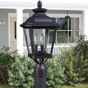 Darby Home Co Sunbury 3-Light Outdoor Lantern Head