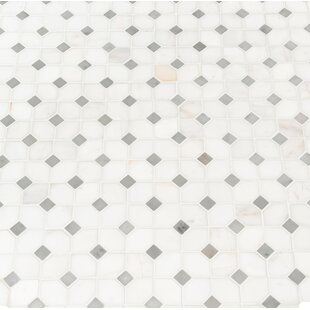 Bianco Dolomite Marble Mosaic Tile in White