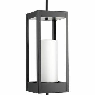Knox 1-Light Outdoor Hanging Lantern