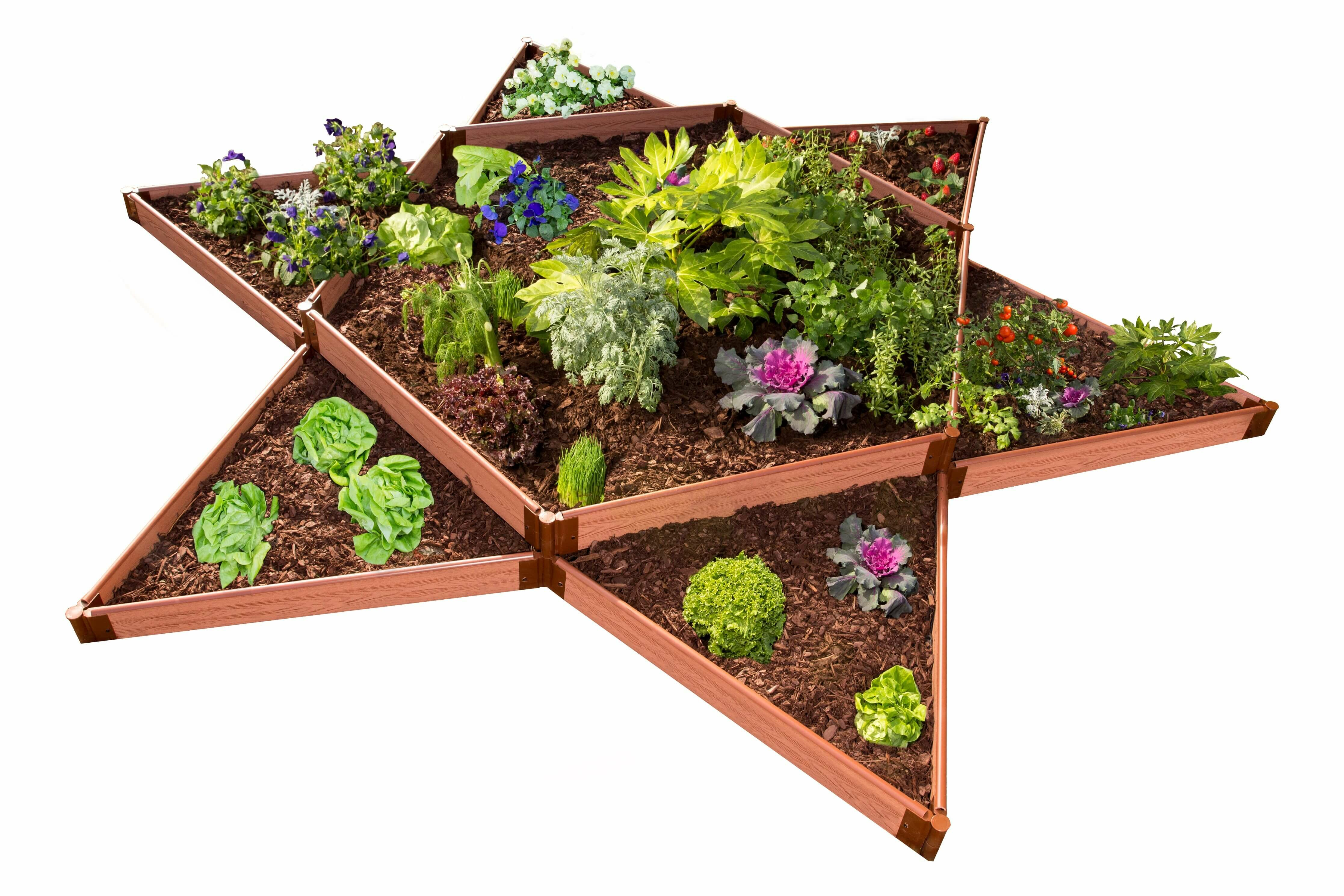Frame It All Tool Free Classic Sienna One Inch Star 12 Ft X 12 Ft Raised Garden Wayfair