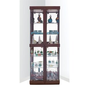 Catchings Lighted Corner Curio Cabinet by Latitude Run