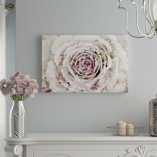 Oversized Wall Art Youll Love Wayfair - Decorative-floral-print-chairs-from-floral-art