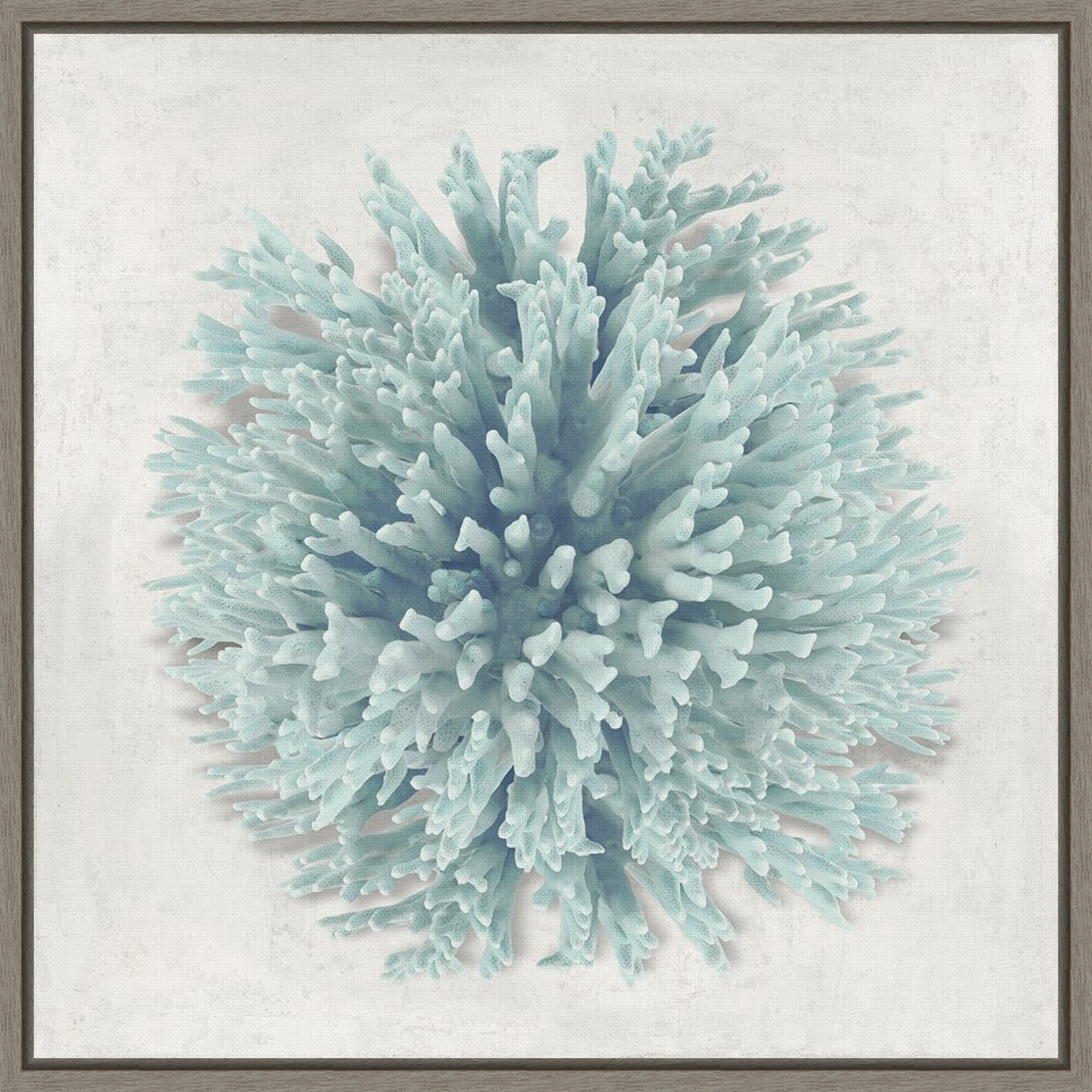 Dovecove Coral Mint I By Caroline Kelly Floater Frame Photograph Print On Canvas Wayfair
