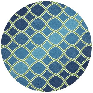 Danko Blue Indoor/Outdoor Area Rug