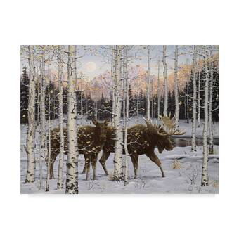 Premium Thick-Wrap Canvas Wall Art entitled Moose hides in ice fog and birch