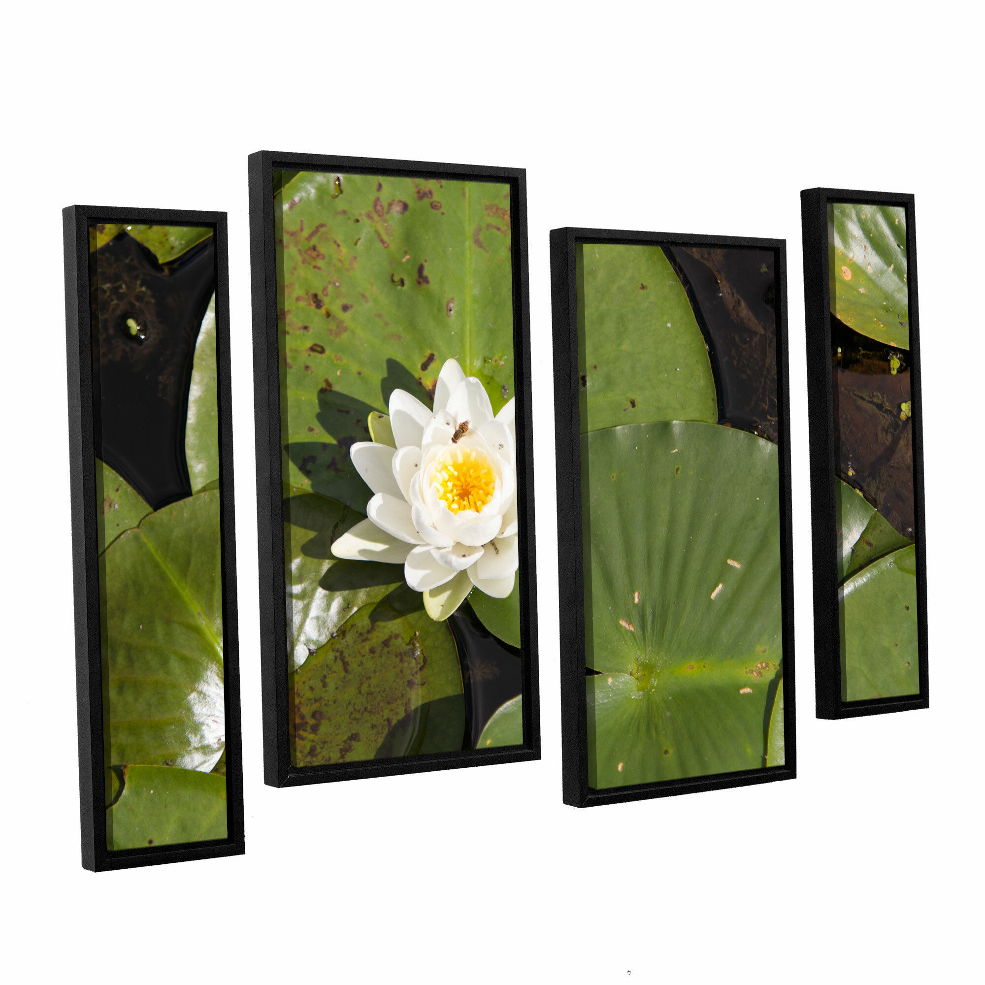 Artwall Lily Pad By Cody York 4 Piece Framed Photographic Print On Canvas Set Wayfair