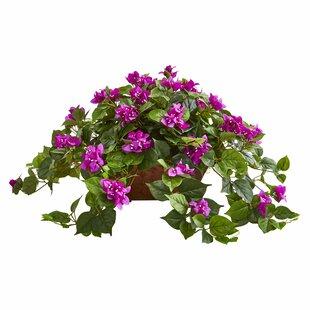 Artificial Bougainvillea Plant Floral Arrangement in Basket