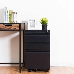 Buschwick 3 Drawer Filing Cabinet By Rebrilliant