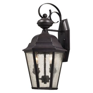 Darby Home Co Drennen 2-Light Outdoor Wall Lantern
