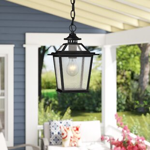 Bruggeman 1-Light Outdoor Hanging Lantern