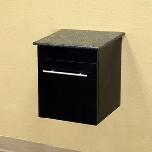 Ramsey 15 Wall-Mounted Bathroom Vanity Base by Bellaterra Home