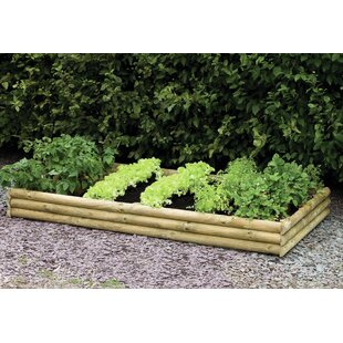 Hopkint 204cm X 104cm Wooden Raised Flower Bed By Freeport Park