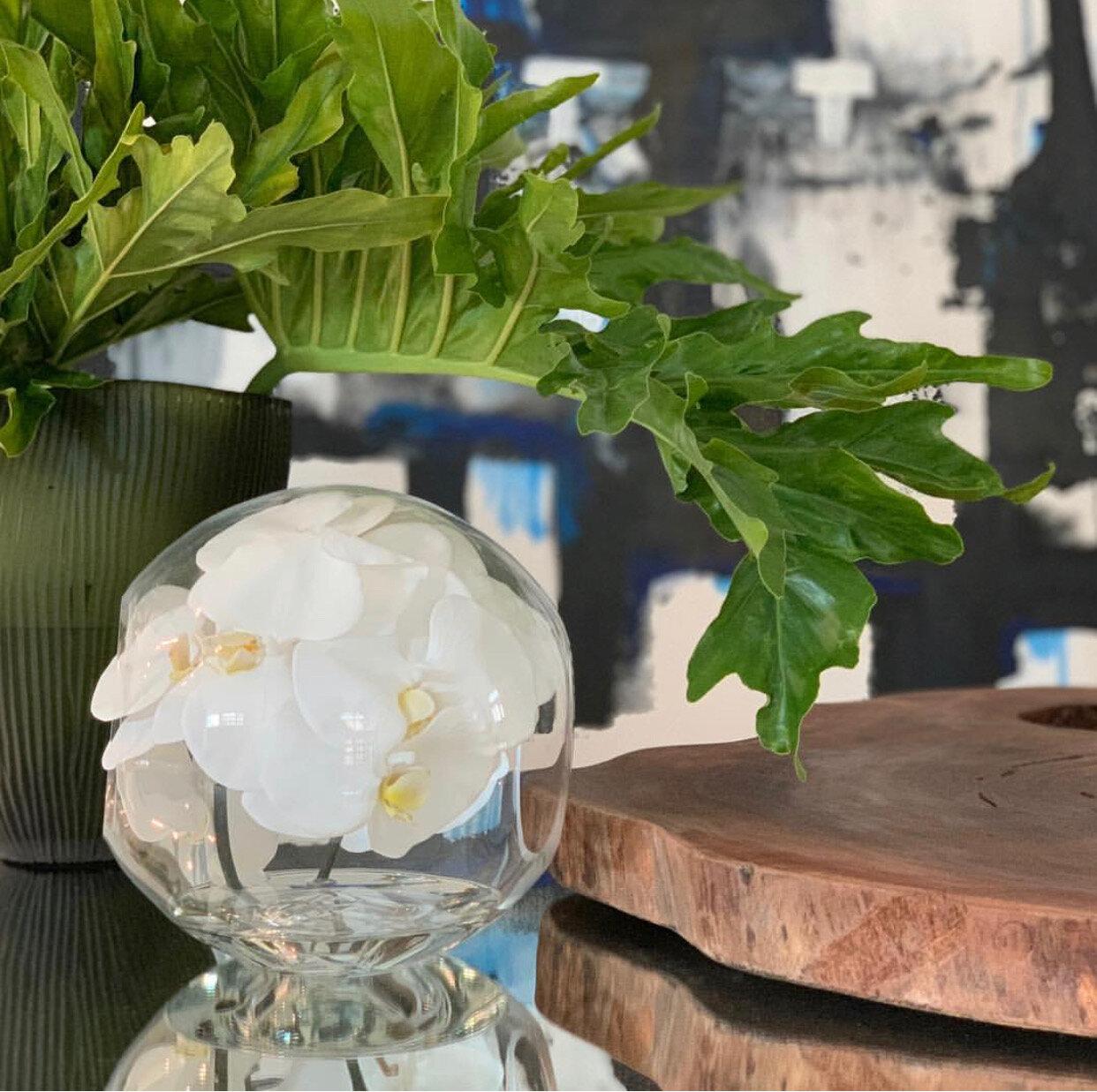 Bloomsbury Market Crosswinds Phalaenopsis Orchids Floral Arrangement In Vase Reviews Wayfair