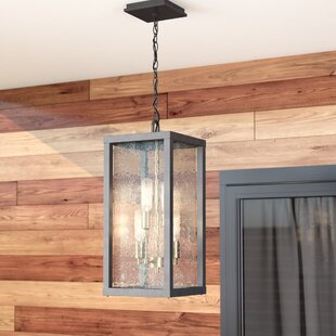 Brayden Studio Anguiano 4-Light Outdoor Pendant