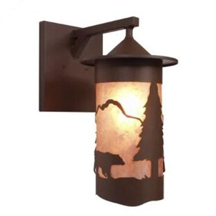 Price Check Bear Pasadena 1-Light Outdoor Wall Lantern By Steel Partners