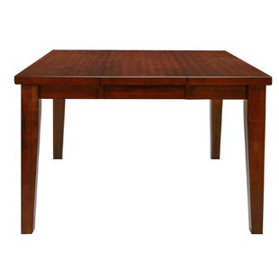 Pristine Counter Height Dining Table by Hokku Designs Cheap