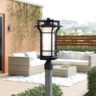 Millwood Pines Espitia Outdoor 1-Light Lantern Head
