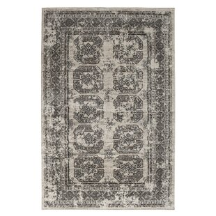 Buy Wilkinson Birch White/Sterling Gray Area Rug By Bungalow Rose