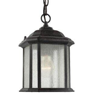 Outdoor hanging lights joss main burtt 1 light outdoor hanging lantern aloadofball Images