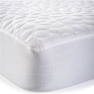 Dream Decor Pebbletex Tencel Bed Bug Encasement Hypoallergenic Waterproof Mattress Protector