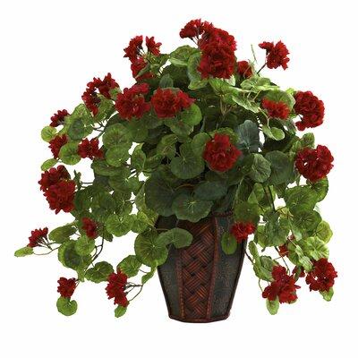 Geranium Desk Top Plant in Decorative Vase Alcott Hill