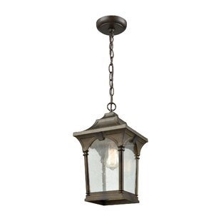 Beachcrest Home Alena 1-Light Outdoor Hanging Lantern