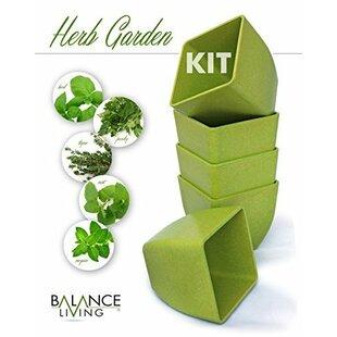 Balance Living Set Of 5 Herb Garden Seeds, Soil And Pots Set By CUL Distributors