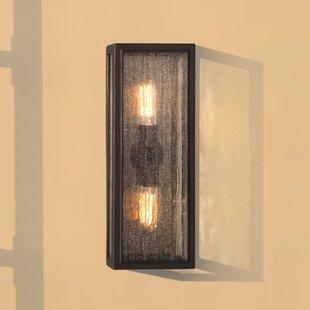 17 Stories Satyadev 2-Light Outdoor Flush Mount