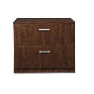 Gerth Locking 2-Drawer Lateral Filing Cabinet by Ebern Designs