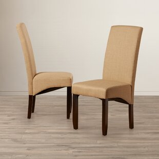 Andover Mills Pandora Parsons Chair (Set of 2)