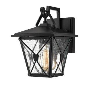 Mae Outdoor Wall Lantern