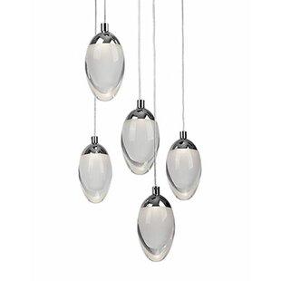 Drop 5-Light Pendant by Radionic Hi Tech