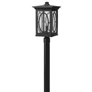 Price Check Mikell Outdoor 1-Light Lantern Head By Bloomsbury Market
