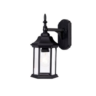 Affordable Pritzker 1-Light Outdoor Wall Lantern By Charlton Home