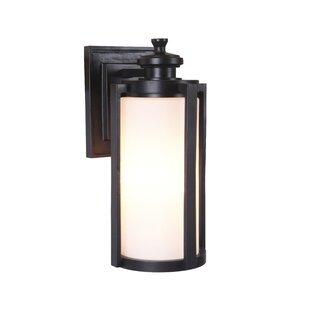 Gracie Oaks Carsten 3-Light Outdoor Wall Lantern