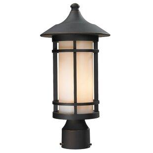 McKew Outdoor 1-Light Lantern Head by Bloomsbury Market