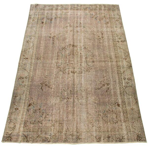 8 X 10 Wool Area Rugs Wayfair